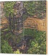 Wentworth Waterfall Wood Print