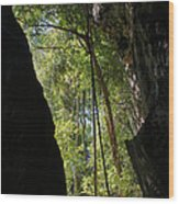 gorge in the Tsingy de Bemaraha Madagascar Wood Print