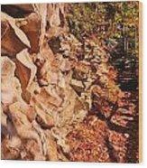 Gorge Trail Wall Wood Print