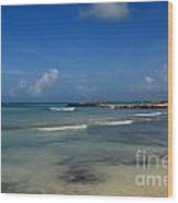 Gorgeous Beach In Aruba Wood Print