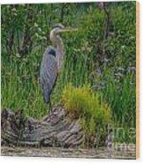Gorgeous Heron Wood Print