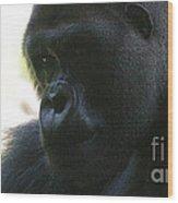 Gorilla-10 Wood Print