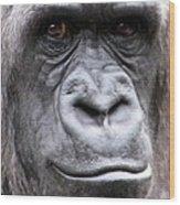 Gorilla - Jackie Wood Print