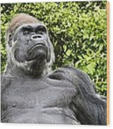 Gorilla Look Wood Print