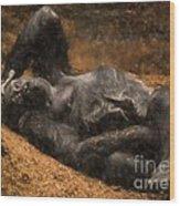 Gorilla - Painterly Wood Print