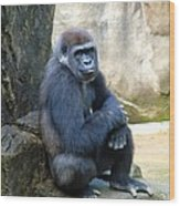 Gorilla Smile Wood Print