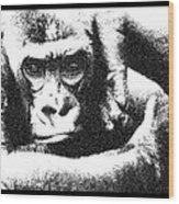 Gorilla Vogue Wood Print