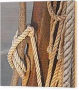 Got Enough Rope  Wood Print by Eugene Bergeron