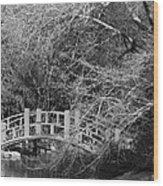 Gothic Bog Walk Wood Print
