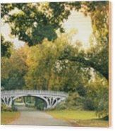 Gothic Bridge In Central Park Wood Print