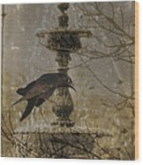 Gothic Fountain Wood Print