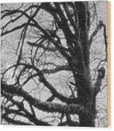 Gothic Oak Wood Print