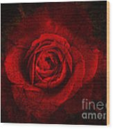 Gothic Red Rose Wood Print