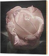 Gothic Rose Wood Print