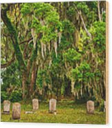 Gould's Cemetery Wood Print