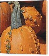 Gourd Wood Print