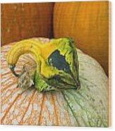 Gourd Pair Wood Print