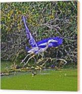 Gr8 Heron Flight Wood Print