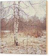 Grace In The Snow. Winter Poems Wood Print