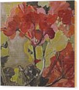 Graceful Geraniums Wood Print