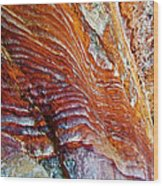Graceful Grooves Rock In Petra-jordan Wood Print