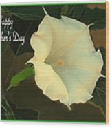 Graceful Moonflower - Happy Mother's Day Wood Print