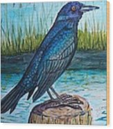 Grackle By The Water Wood Print