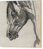 Grafik Polish Arabian Horse Ink Drawing Wood Print