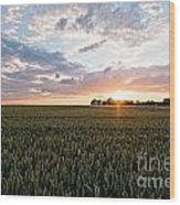 Grain Field Wood Print