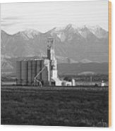 Grain Silo With Mountians Wood Print
