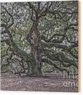 Grand Angel Oak Tree Wood Print