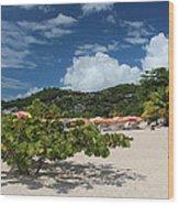 Grand Anse Beach - Grenada Wood Print