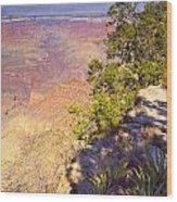 Grand Canyon 55 Wood Print