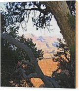 Grand Canyon 74 Wood Print