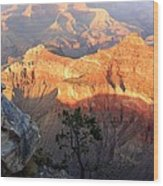 Grand Canyon 83 Wood Print