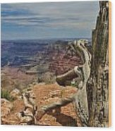 Grand Canyon And Dead Tree 1 Wood Print