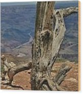 Grand Canyon And Dead Tree 2  Wood Print