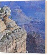 Grand Canyon At Dawn Wood Print