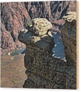 Grand Canyon.  Az Wood Print