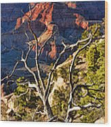 Grand Canyon Branches Wood Print