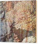 Grand Canyon Color Study Wood Print by Judy Paleologos