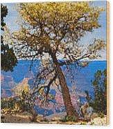 Grand Canyon National Park And Tree Wood Print