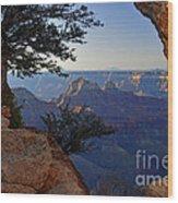 Grand Canyon National Park At Angels Point  Wood Print