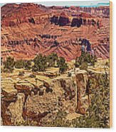 Grand Canyon National Park South Rim Wood Print