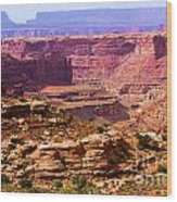Grand Canyon Of Utah Wood Print by Adam Jewell