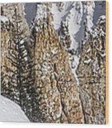 Grand Canyon Of Yellowstone Wood Print