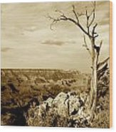Grand Canyon Sepia Wood Print