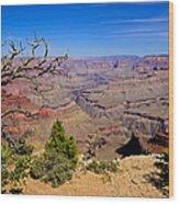 Grand Canyon South Rim Trail Wood Print