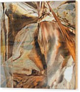 Grand Canyon Up Close And Personal Wood Print by Judy Paleologos