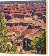 Grand Canyon Valley Wood Print